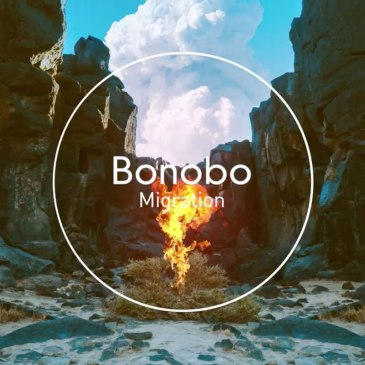 Bonobo Migration